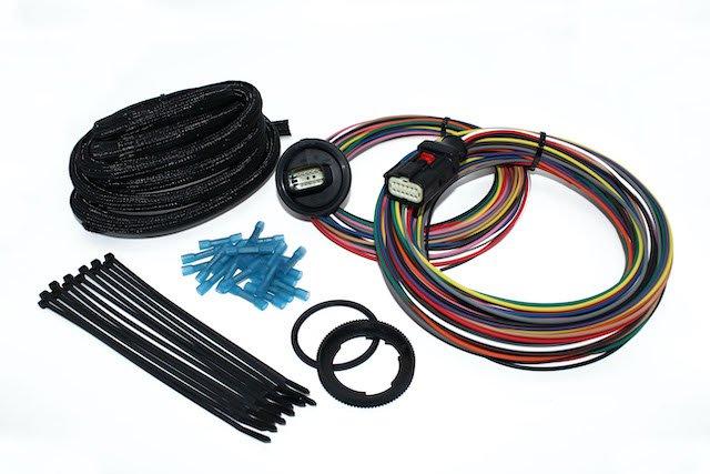 Bulkhead Wiring Harness.JPG