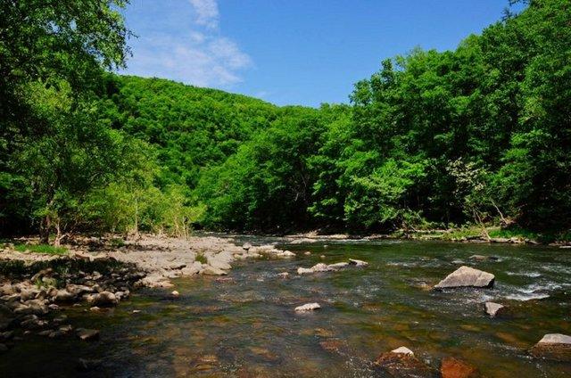 4  West Virginia  Photo WV State Parks.jpg