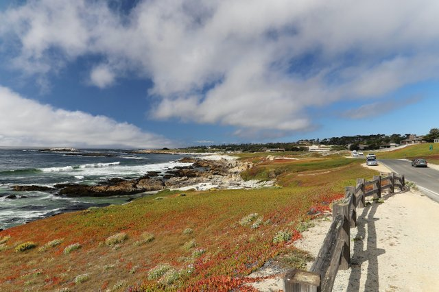Lead California Coast Photo Nestor Ferraro.jpg