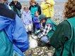 Dosewallips - Shellfish Shindig event.jpg