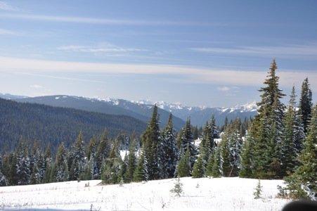 Snow 6.jpg
