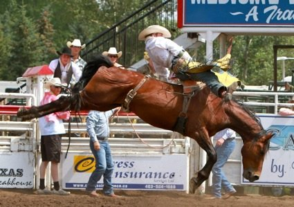 Medicine Hat Rodeo
