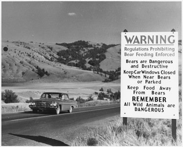 Road_sign_warning_of_the_danger_from_bears_-_NARA_-_286014.jpg