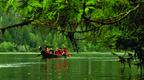 Canoe Under Cedar Branch.jpg