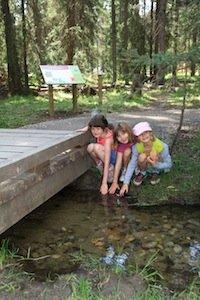 Jasper National Park-credit Parks Canada.JPG