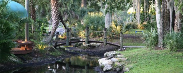 Tropical Palms Canal-263694f5.jpg