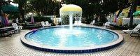 Tropical Palms Kiddie Pool-b285e14c.jpg