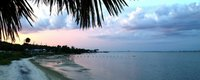 Ocean Breeze 2-0fca84e9.jpeg