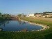 Solstice pond.jpg