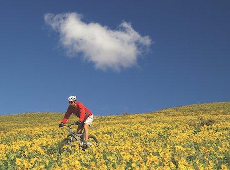 Biking in Okanogan Country