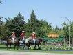 Kamloops Mounted Patrol  Tourism Kamloops lead.jpg
