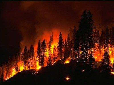 Forest Fires & Campfires