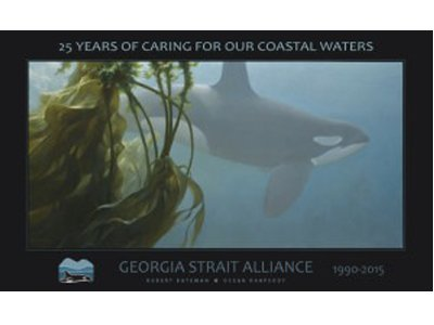 The beauty of the orca can be yours!